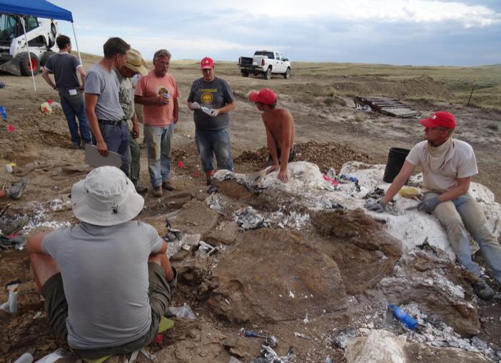 Het Naturalis opgravingsteam op het Triceratops kerkhof