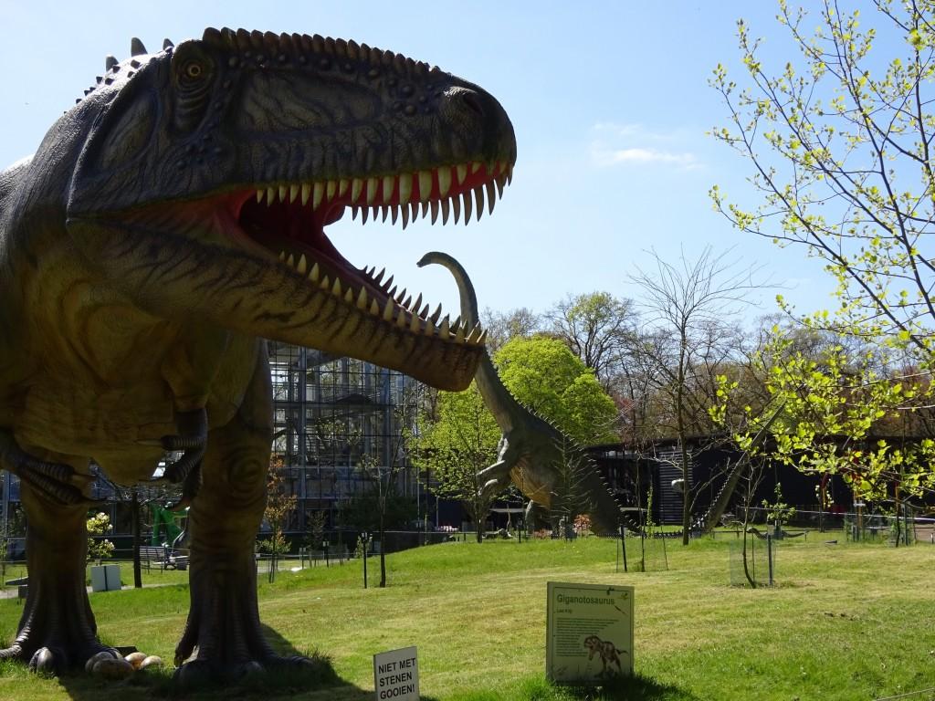 Giganotosaurus met Diplodocus in Oertijdpark